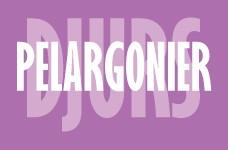 Djurs Pelargonier